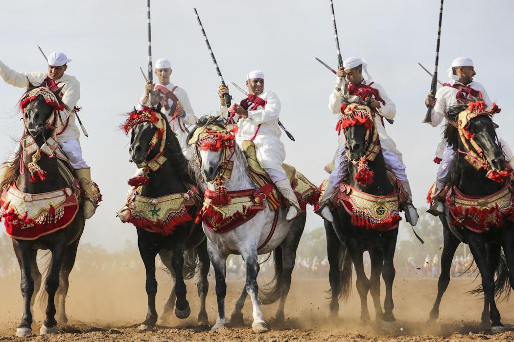 The Tbourida in Morocco