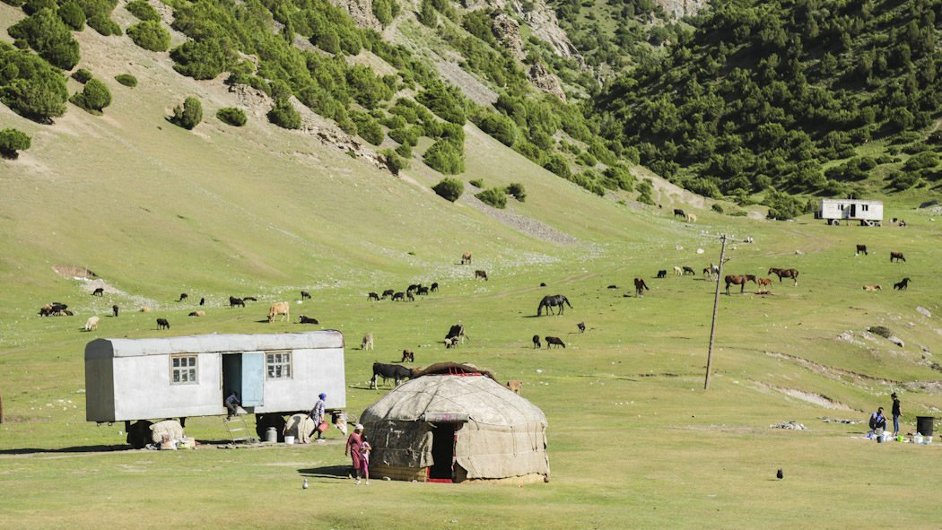 Reasons to visit Kyrgyzstan alay valley