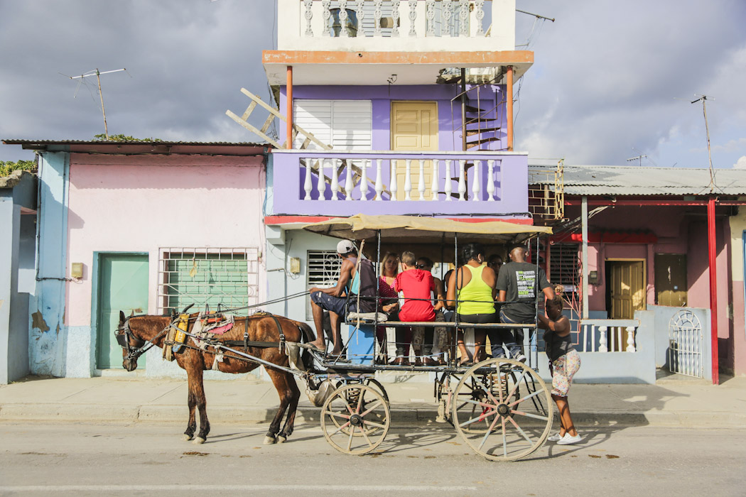 diariesof-cuba horse cart