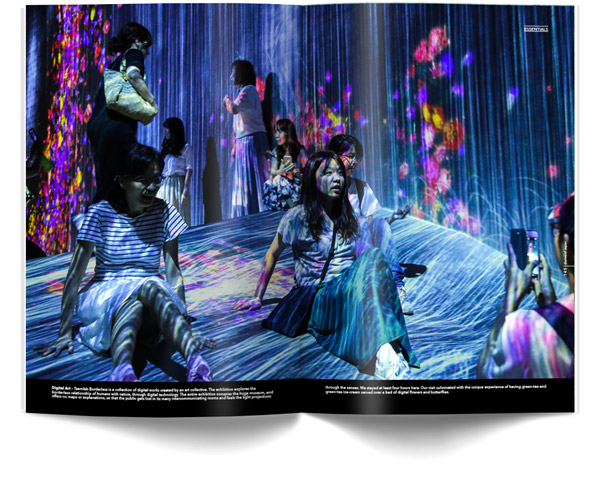 diariesof-Japan-Tokyo-teamLab-Borderless-Interactive-Digital-Art-Museum