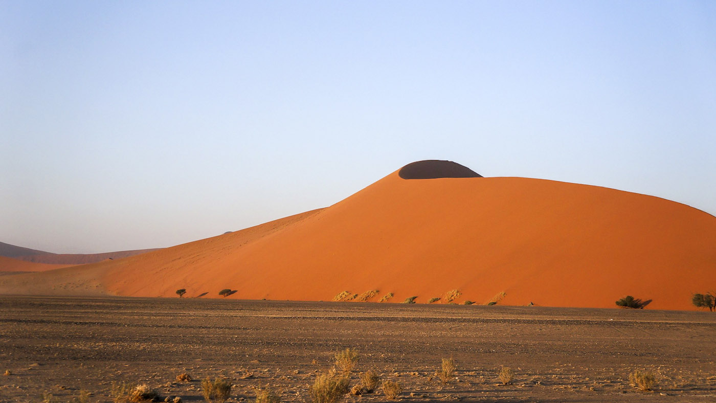 WEB_Dune