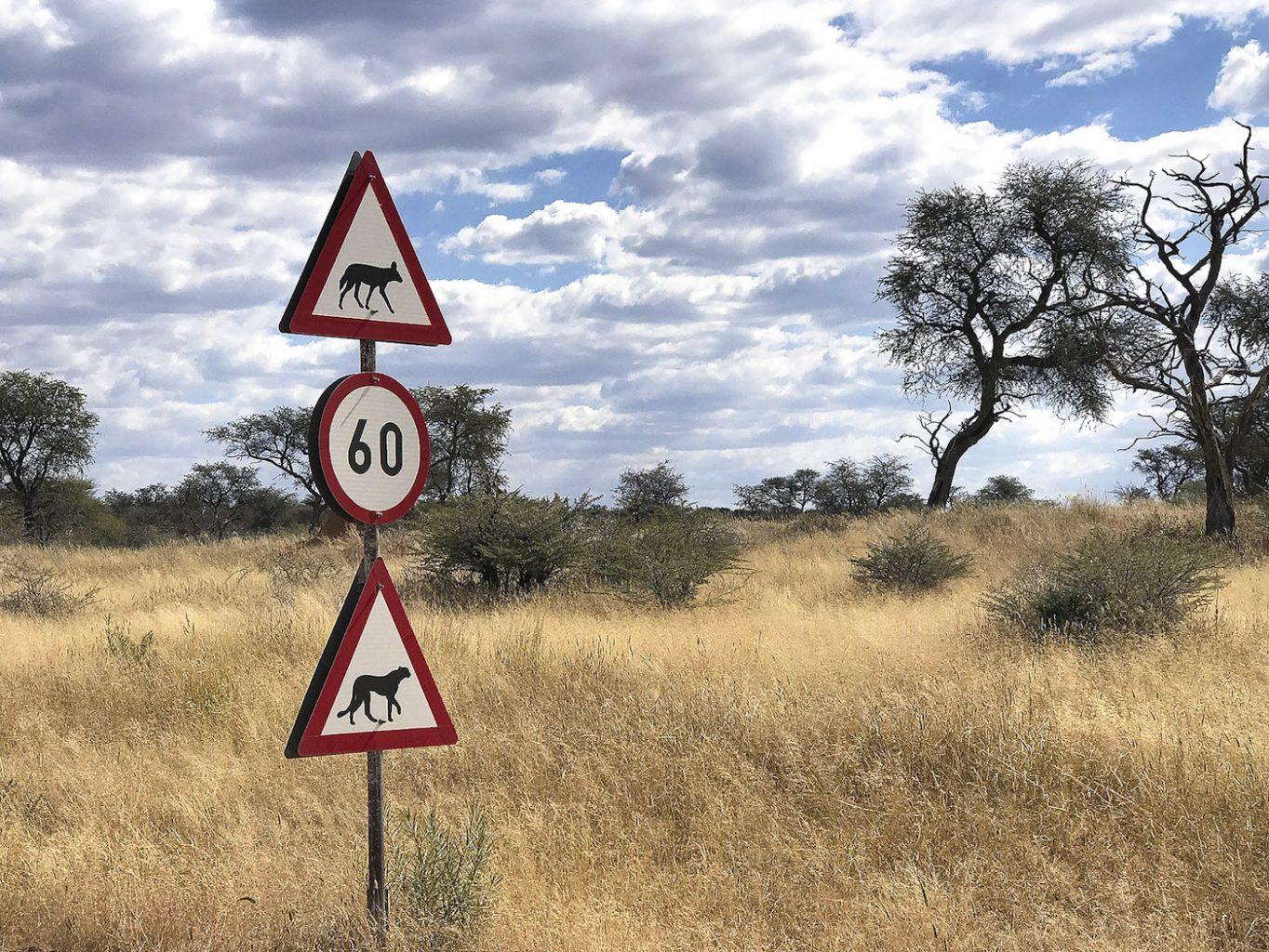 WEB_Signpost
