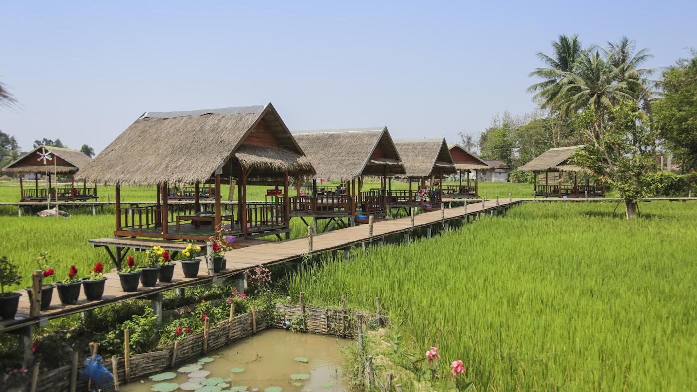 manamae garden restaurant_AN3A4050