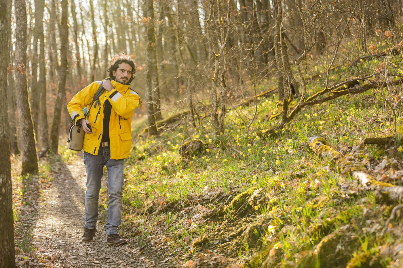 diariesof-daffodils-forest-lellingen-luxembourg-9777