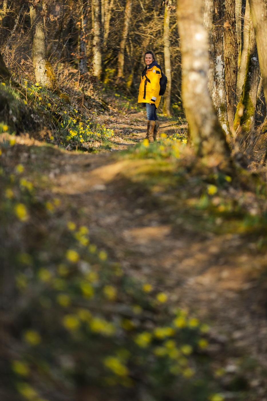 diariesof-daffodils-forest-lellingen-luxembourg-9805