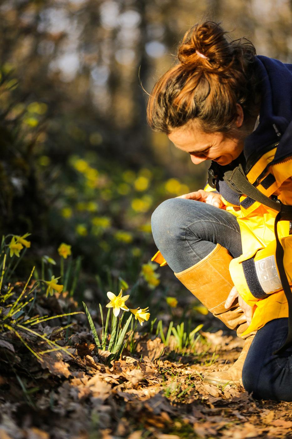 diariesof-daffodils-forest-lellingen-luxembourg-9816